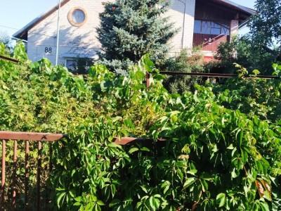 Продам будинок с. Новоселівка, 18 км від міста