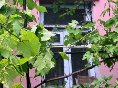 Продам частину будинку Зелений яр, вул. Шевченко